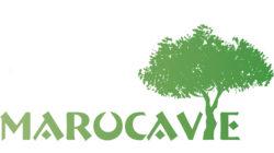 OLVEA-Marocavie
