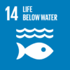 OLVEA-United-Nations-Sustainable-Development-Goal-14-Life-Below-Water